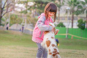 adopta un animal